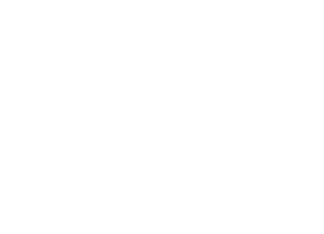 Minneapolis St. Paul International Film Festival